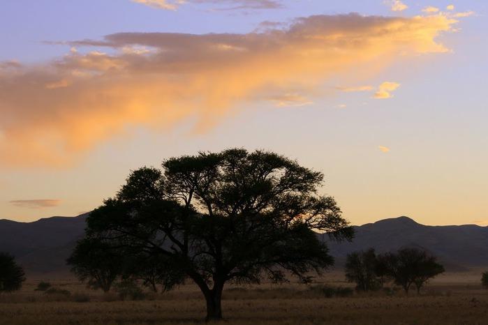 Намибия - страна двух пустынь 27356