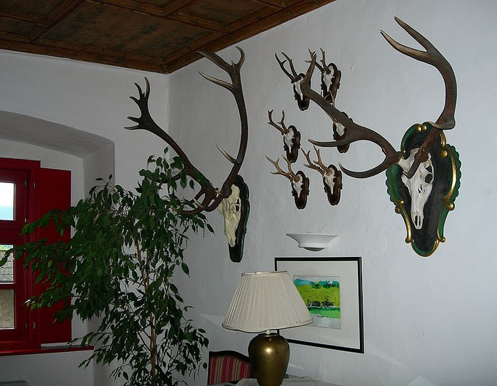 Замок Габельхофен - Hotel Schloss Gabelhofen 36496