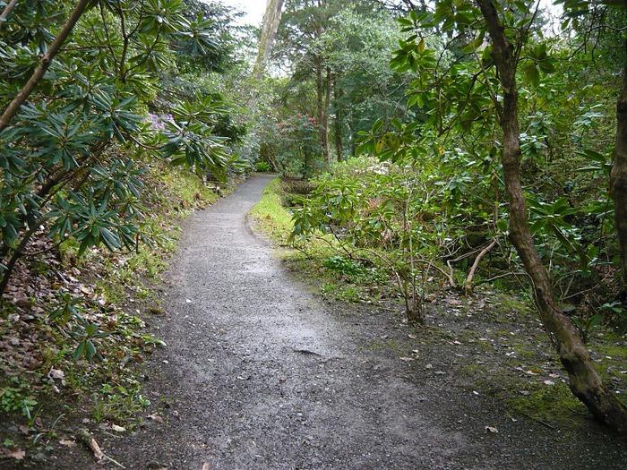 образцовый сад – волшебный Bodnant Garden 25327