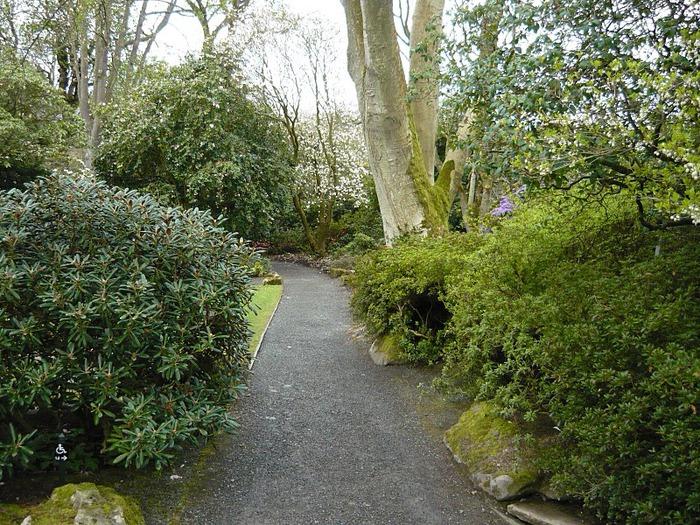 образцовый сад – волшебный Bodnant Garden 34927