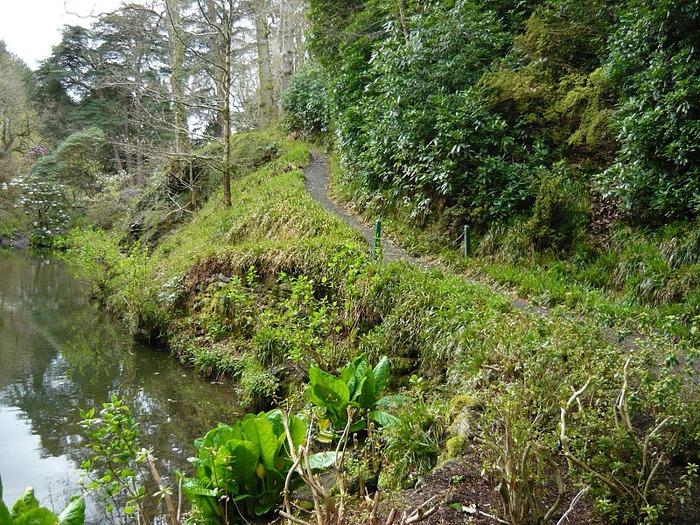 образцовый сад – волшебный Bodnant Garden 75112