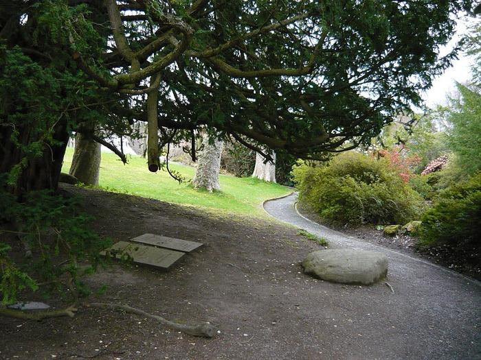 образцовый сад – волшебный Bodnant Garden 96447