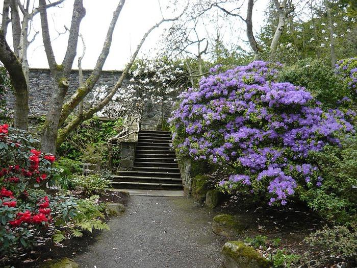 образцовый сад – волшебный Bodnant Garden 73746