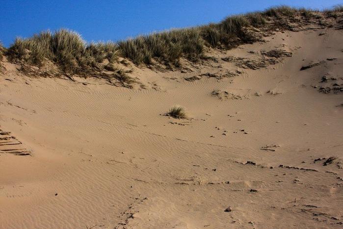 Зюльт: остров дюн и устриц 54435