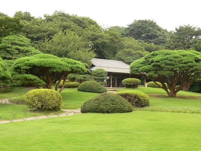 Shinjuku Gyoen - Парк Синдзюку 19196