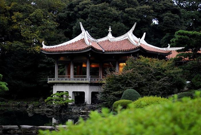Парк Синдзюку - один из наиболее огромных парков Токио 11