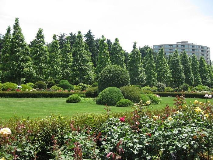 Парк Синдзюку - один из наиболее огромных парков Токио 20
