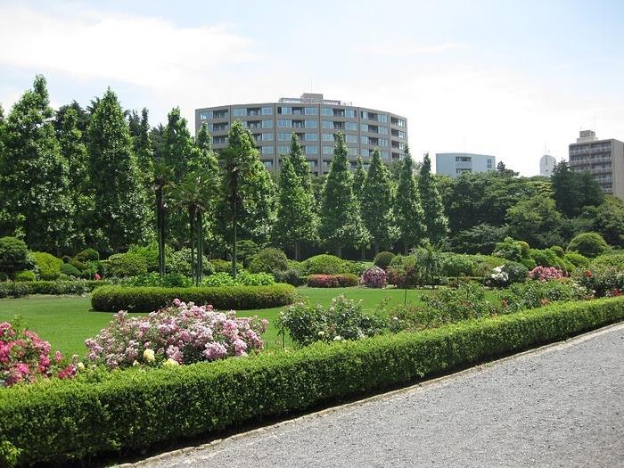 Парк Синдзюку - один из наиболее огромных парков Токио 21