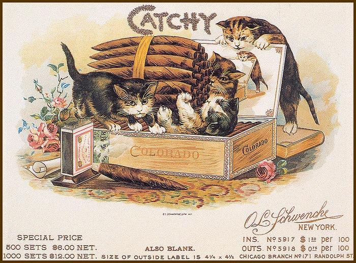Винтажные открытки с котами 2