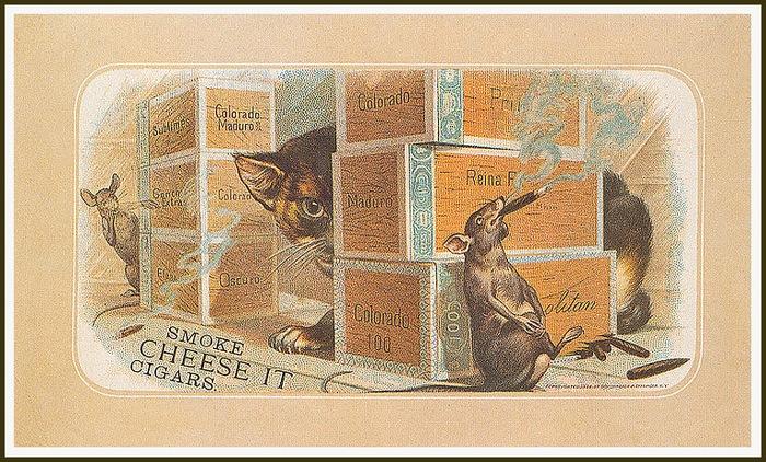 Винтажные открытки с котами 4