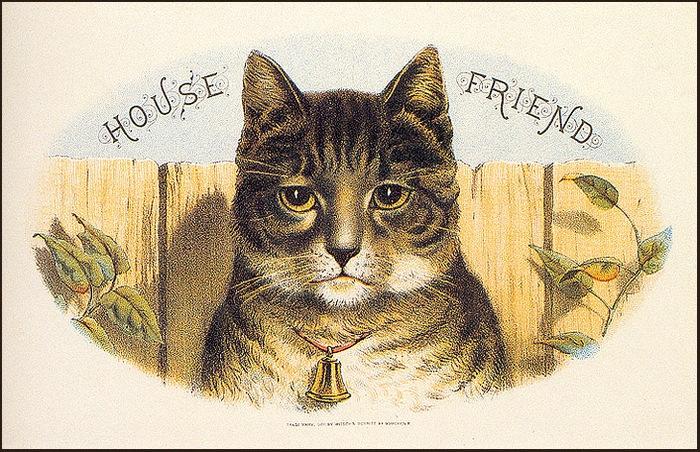 Винтажные открытки с котами 11