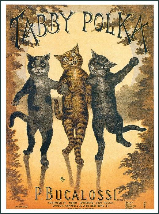Винтажные открытки с котами 20