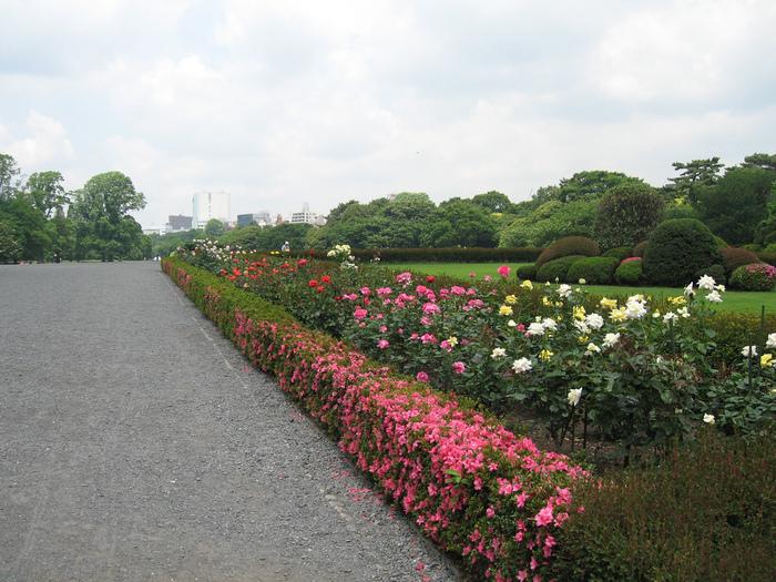 Shinjuku Gyoen - Парк Синдзюку 48891