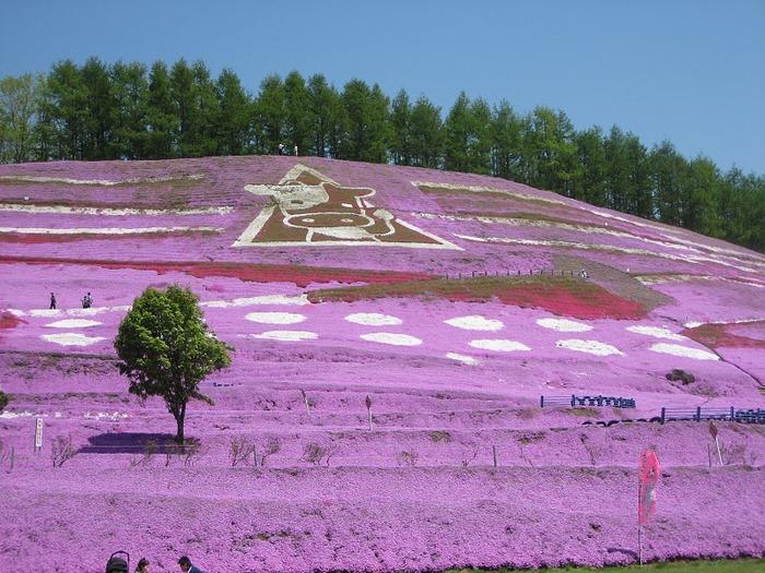 Higashi Mokoto Shibazakura Park 57337