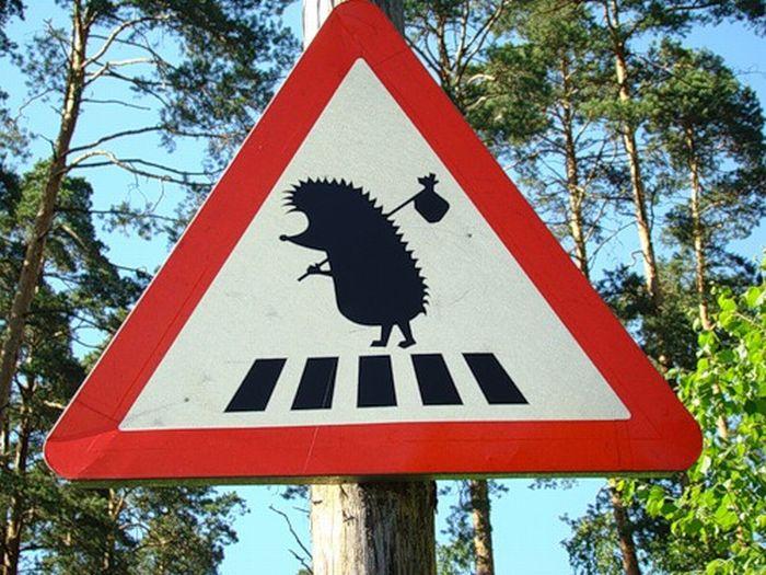 """""""Чешские ежи"""" и бетонные блоки: в спецмиссии ОБСЕ сообщили, что дорога от Золотого к Первомайску заблокирована - Цензор.НЕТ 2197"""