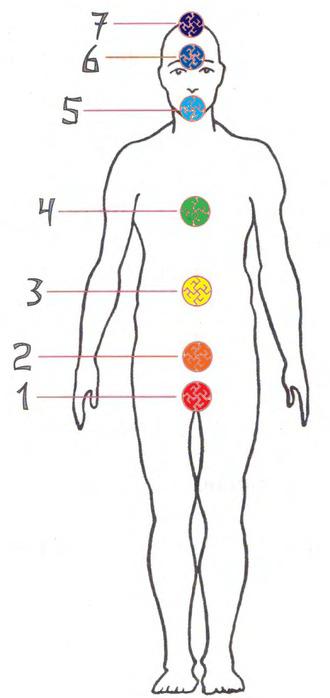 Место нахождения...  Схема распределения чакр в восточной системе.