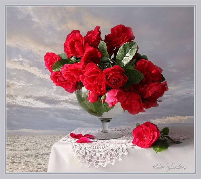 Красивые цветы для настроения