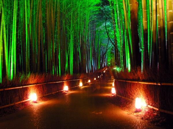 Японский сад 49178032_1254004306_Okochi_Sanso