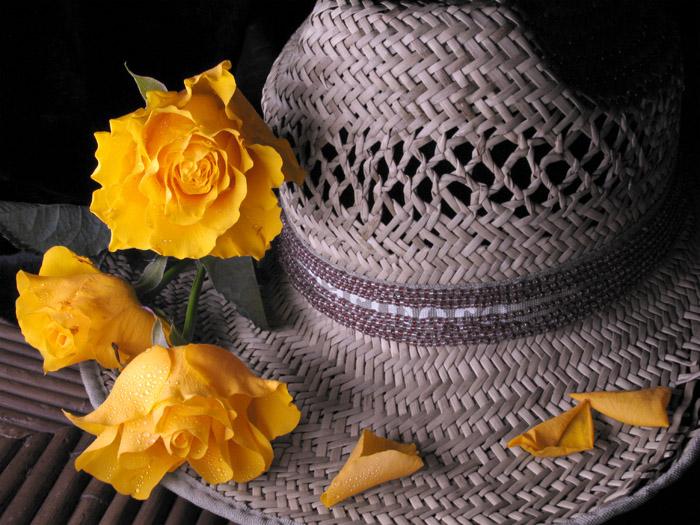 Желтая роза смотрела на них удивленно, Не замечая, что красною стала она, Желтая роза цвета разлуки, Красное.