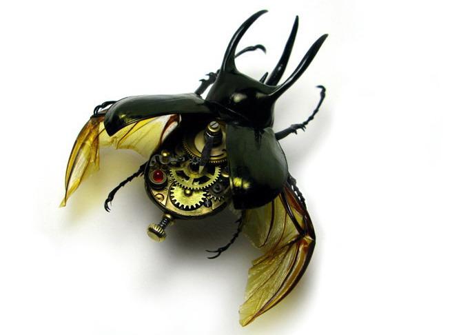 Nasekomie Mike Libby 8 Необычные насекомые Майка Либби (22фото).