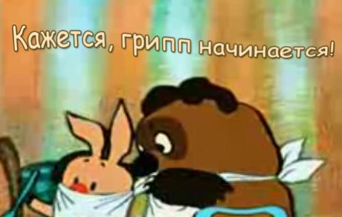 В Ярославле началась массовая вакцинация против гриппа среди взрослого населения.