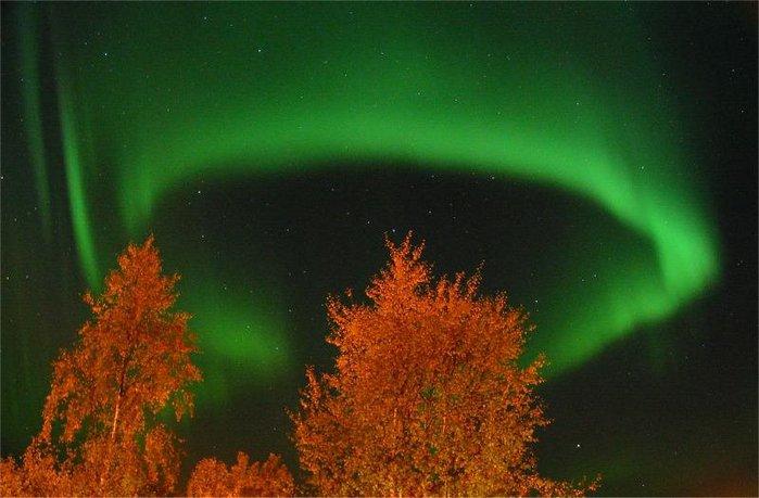 http://img0.liveinternet.ru/images/attach/c/1/51/317/51317333_aurora_lindersen2_full.jpg