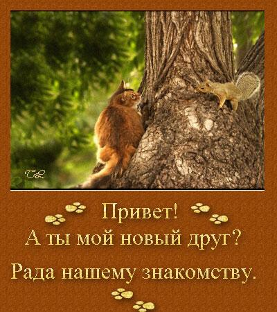51449133_42172502_Untitled1.jpg