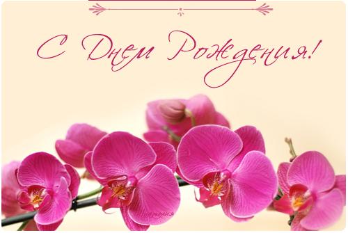 51462729_49743349_S_Dnem_Rozhdeniya_28.png