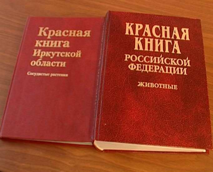 Скачать книгу законы украины
