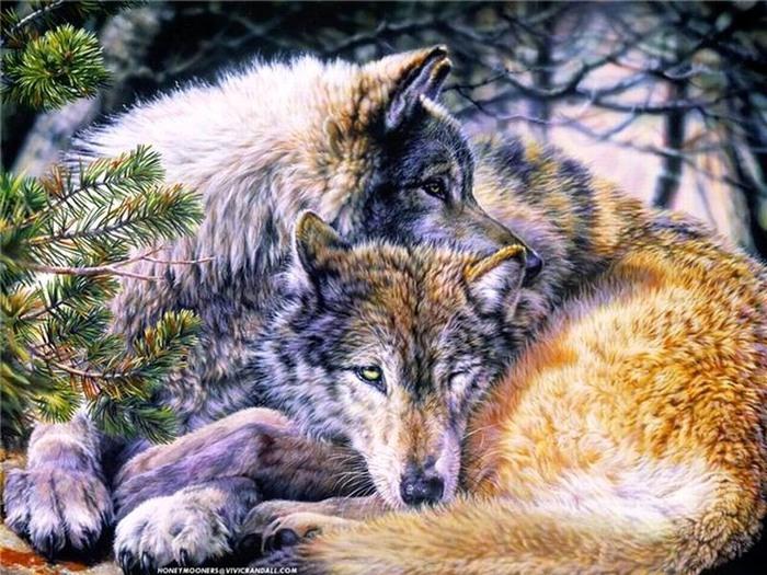 Пара волков + b вышивка крестом /b Женский.