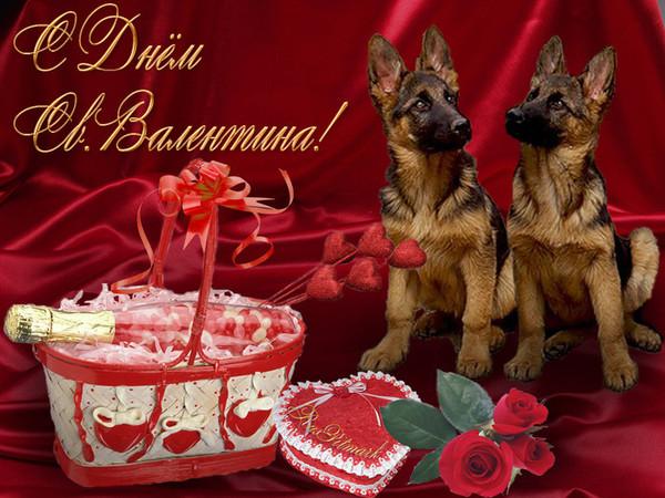 http://img0.liveinternet.ru/images/attach/c/1/55/156/55156077_S_dnyom_valentina.jpg