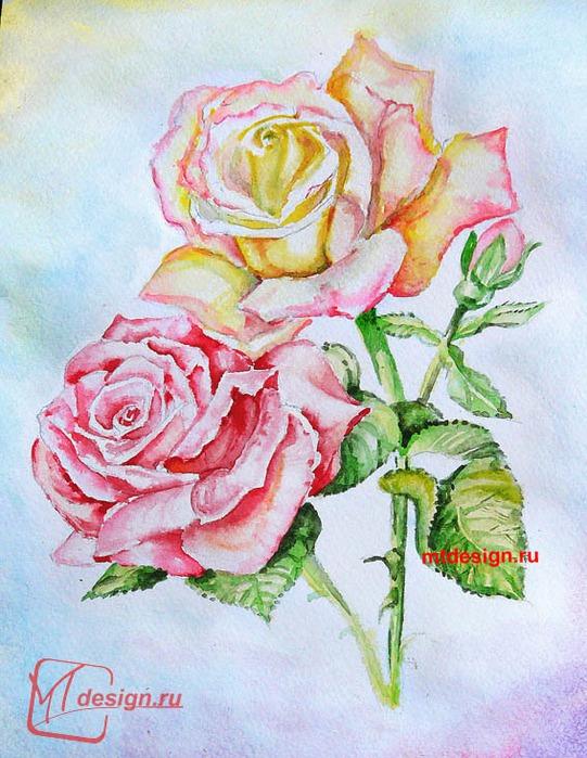 рисунки цветов карандашом: