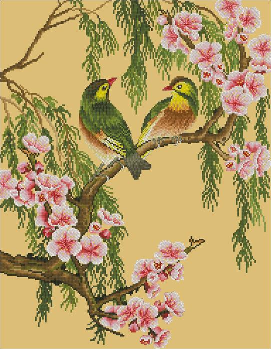 Обои Цветущий сад сакуры,