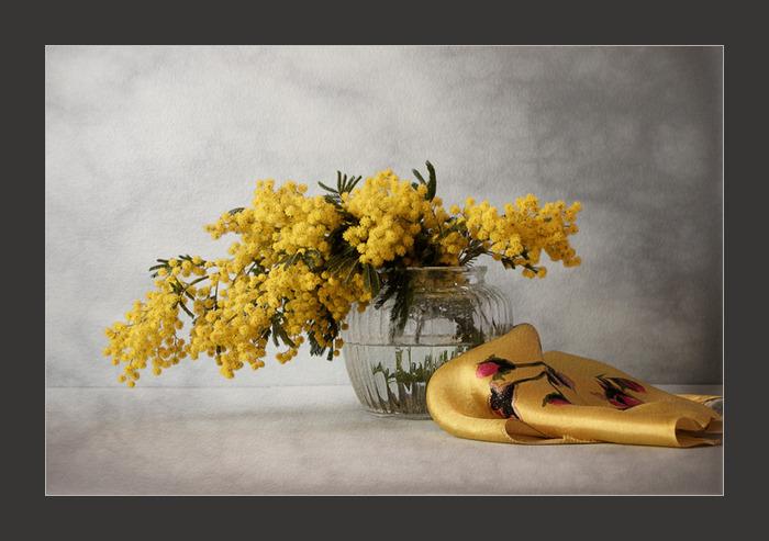 ...месяце ветка мимозы В тонкой вазе на круглом столе, Не страшась ни ветров, ни морозов Тихо шепчет о близкой весне.