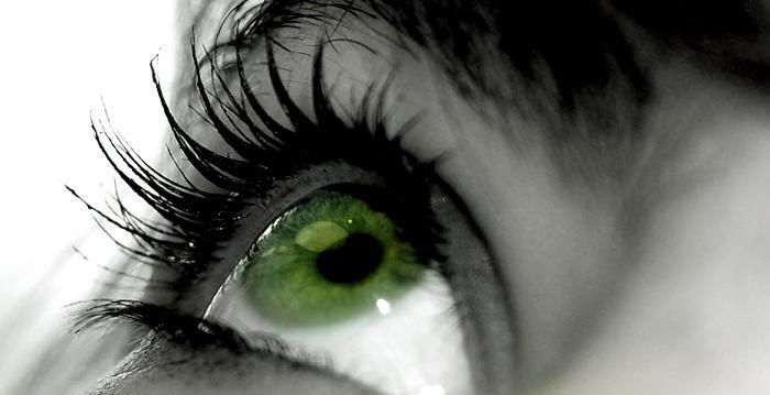 Тут собрались Зелёные глаза.Они строят свою деревню в самой чаще леса.