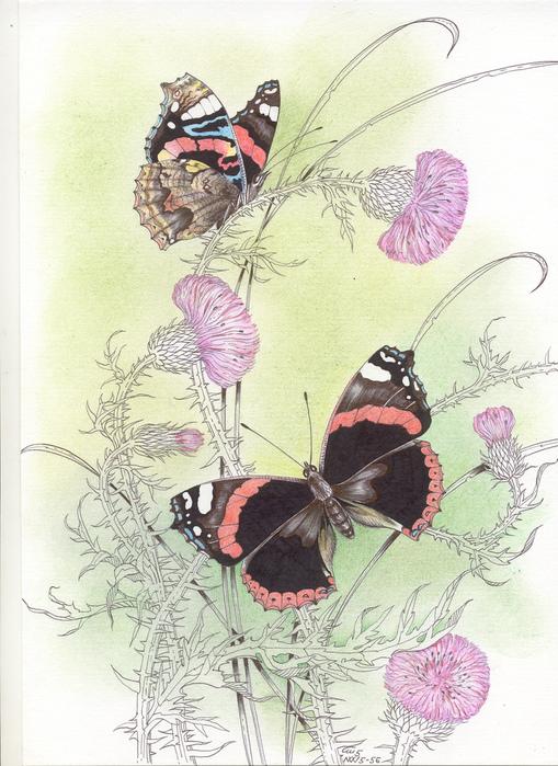 """Схема вышивки  """"Цветы и бабочки """": схема."""