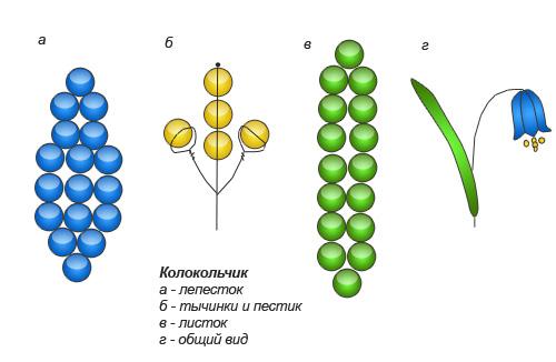 Все цветы из бисера легко схемы