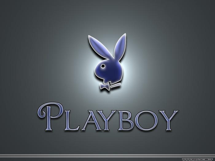 http://img0.liveinternet.ru/images/attach/c/1/56/650/56650116_playboy.jpg