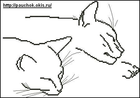 3 раз.  Котики.  Нравится Поделиться. схема вышивка крестом. коты.  Воскресенье, 21 Марта 2010 г. 17:47.