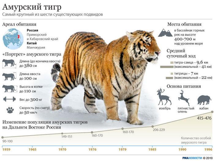 http://img0.liveinternet.ru/images/attach/c/1/57/123/57123381_207301879.jpg