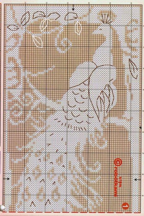 Павлины филейное вязание