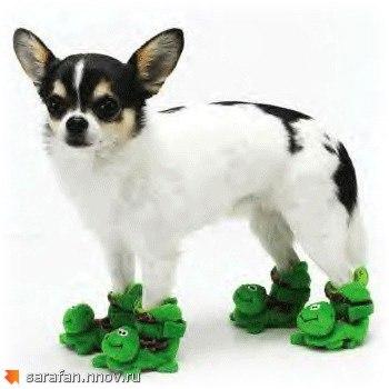 соединяем обувь для собаки