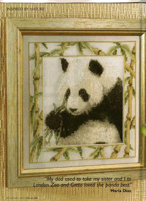 """""""панда, Ирисы, Мост мечты."""