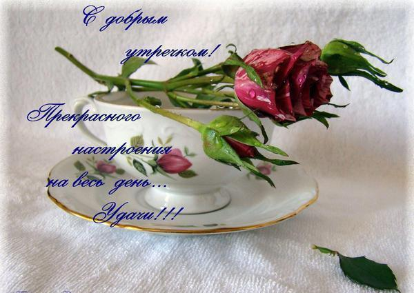 http://img0.liveinternet.ru/images/attach/c/1/59/218/59218756_4bbd6853a358.jpg