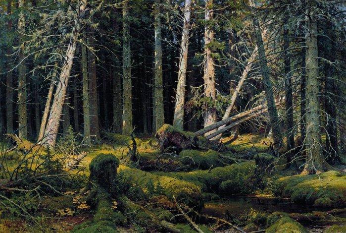 тайна гибнущего леса