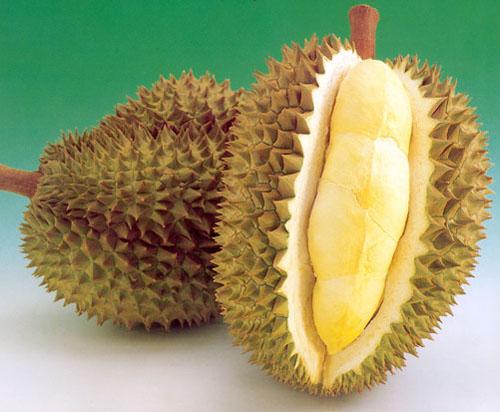 Дуриан часто называют королем тайских фруктов.  Весит он от 2 до 10...