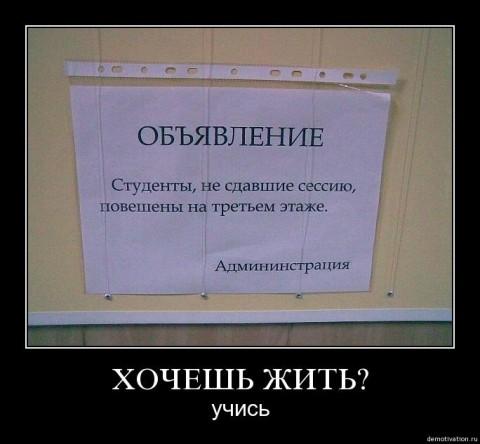 60021329_1275928611_bbpi.jpg