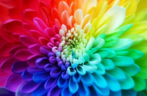 http://img0.liveinternet.ru/images/attach/c/1/60/229/60229284_springcolors.jpg