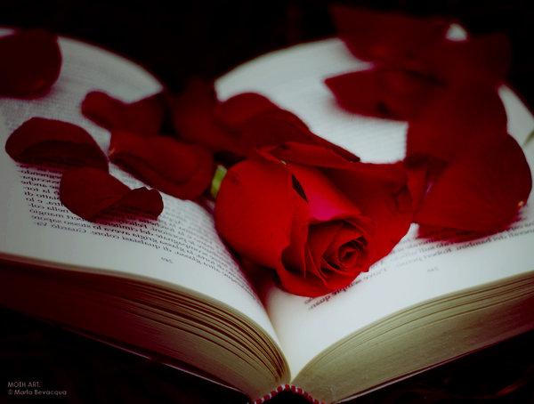 http://img0.liveinternet.ru/images/attach/c/1/60/629/60629484_1277149760_the_book_of_beauty__by_m0thyyku.jpg