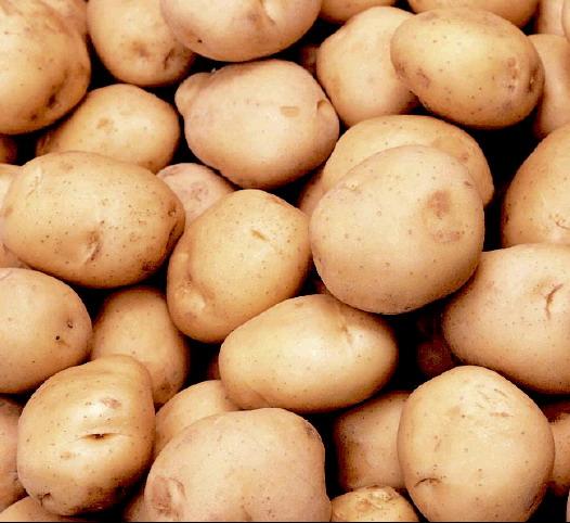 продам Продам картофель в Кемерово 1756.